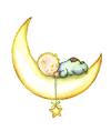 Baietel pe luna